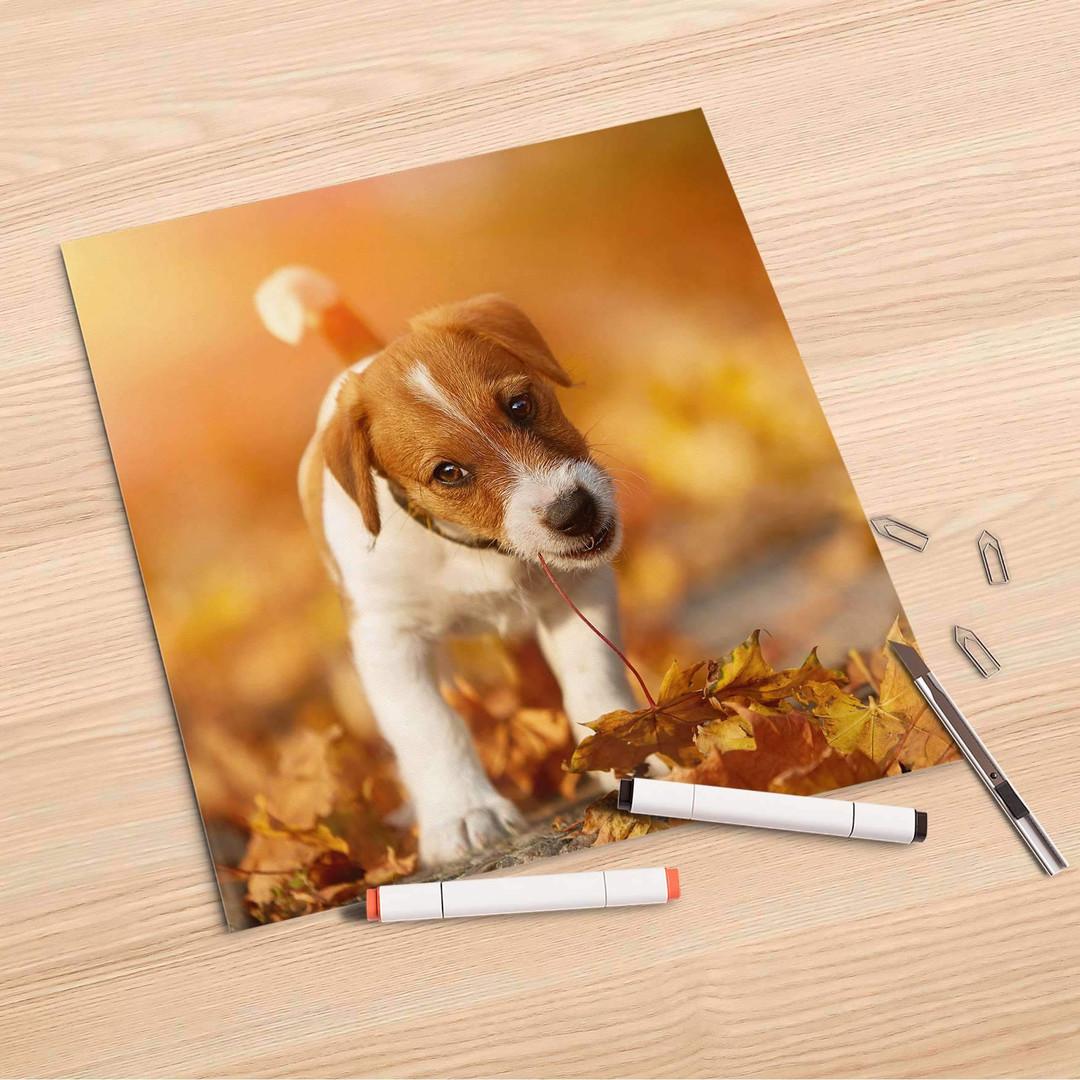 Folienbogen (30x30cm) - Jack the Puppy - CR106864