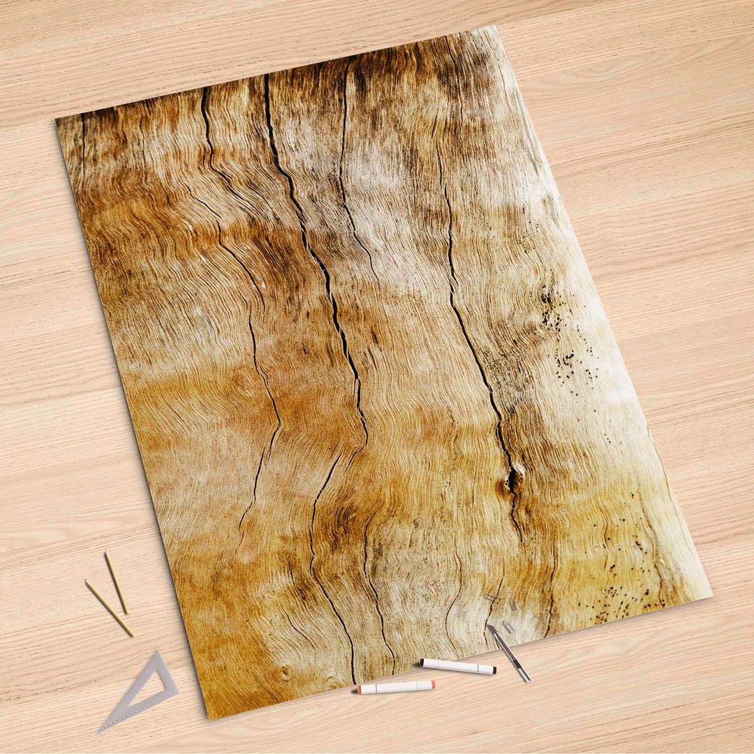 Folienbogen (100x150cm) - Unterholz - CR106300