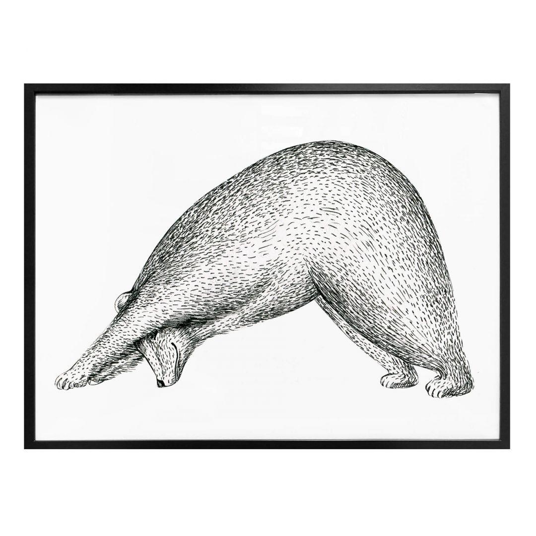 Poster Kvilis - Yoga Bär 01 - WA258452