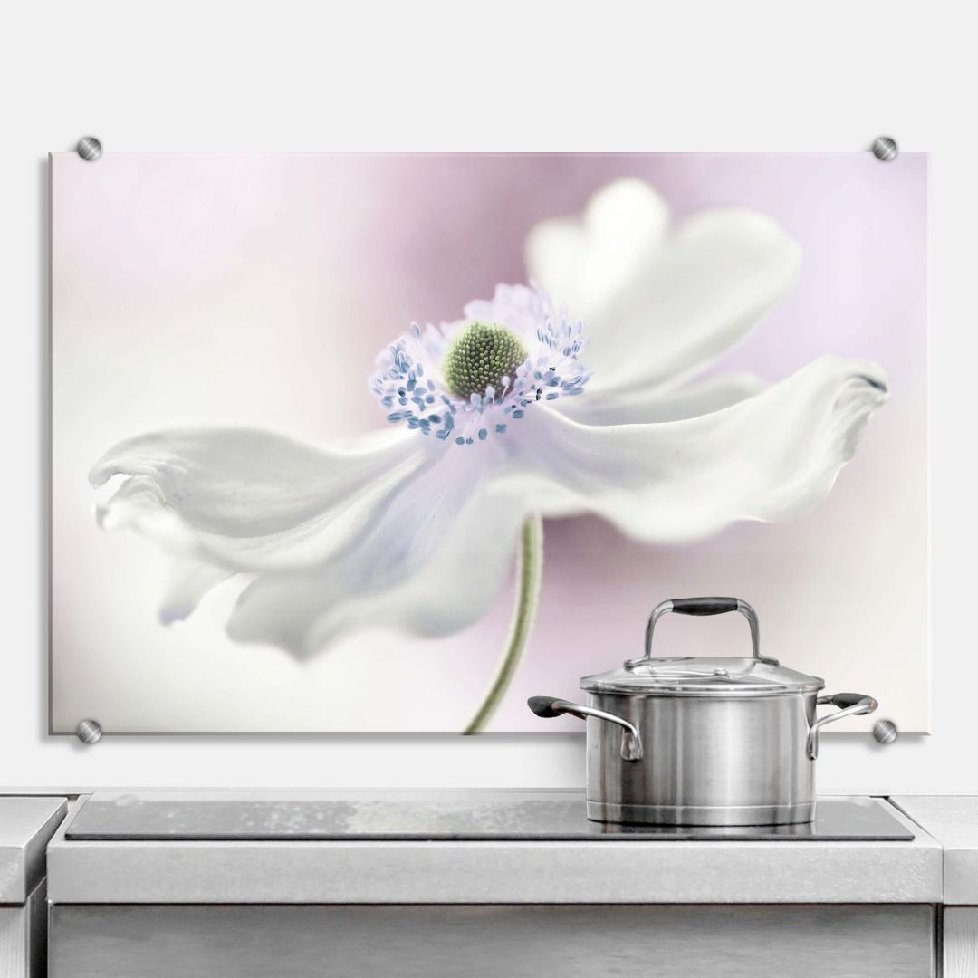 Spritzschutz Disher - Anemone Breeze - WA283496