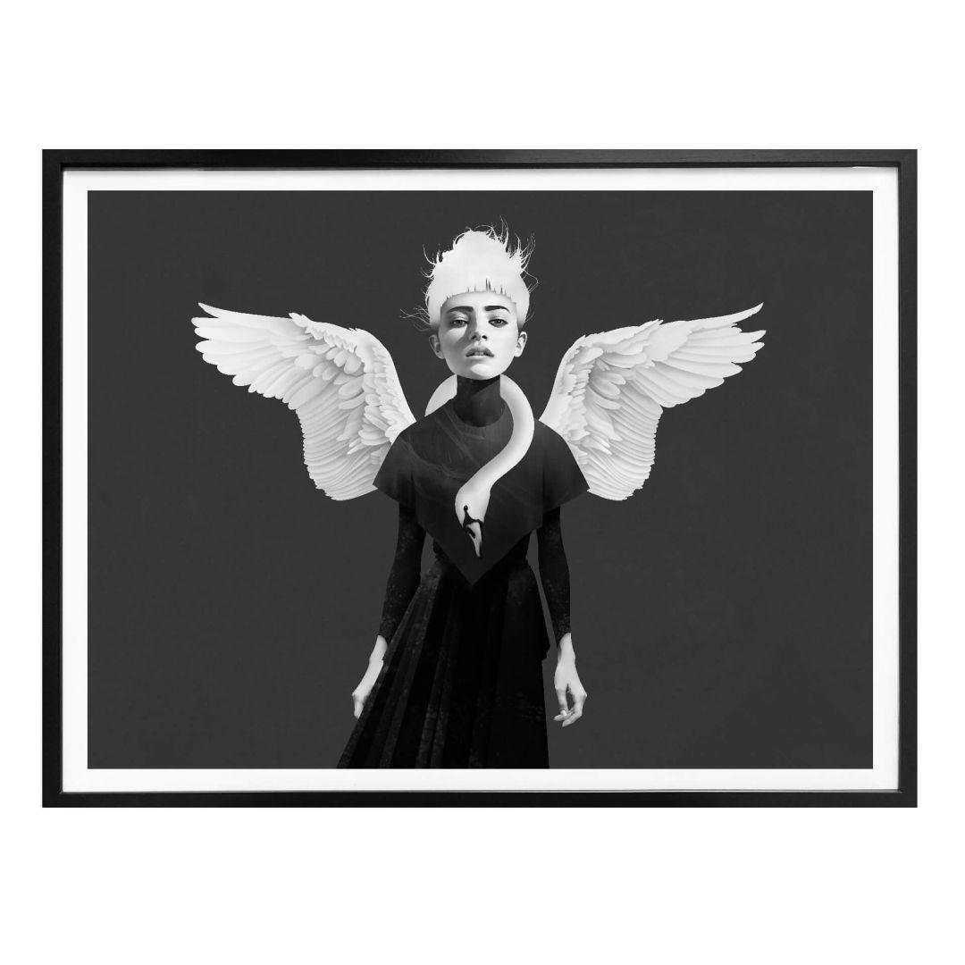 Poster Ireland - Bloom - Schwan - WA258023