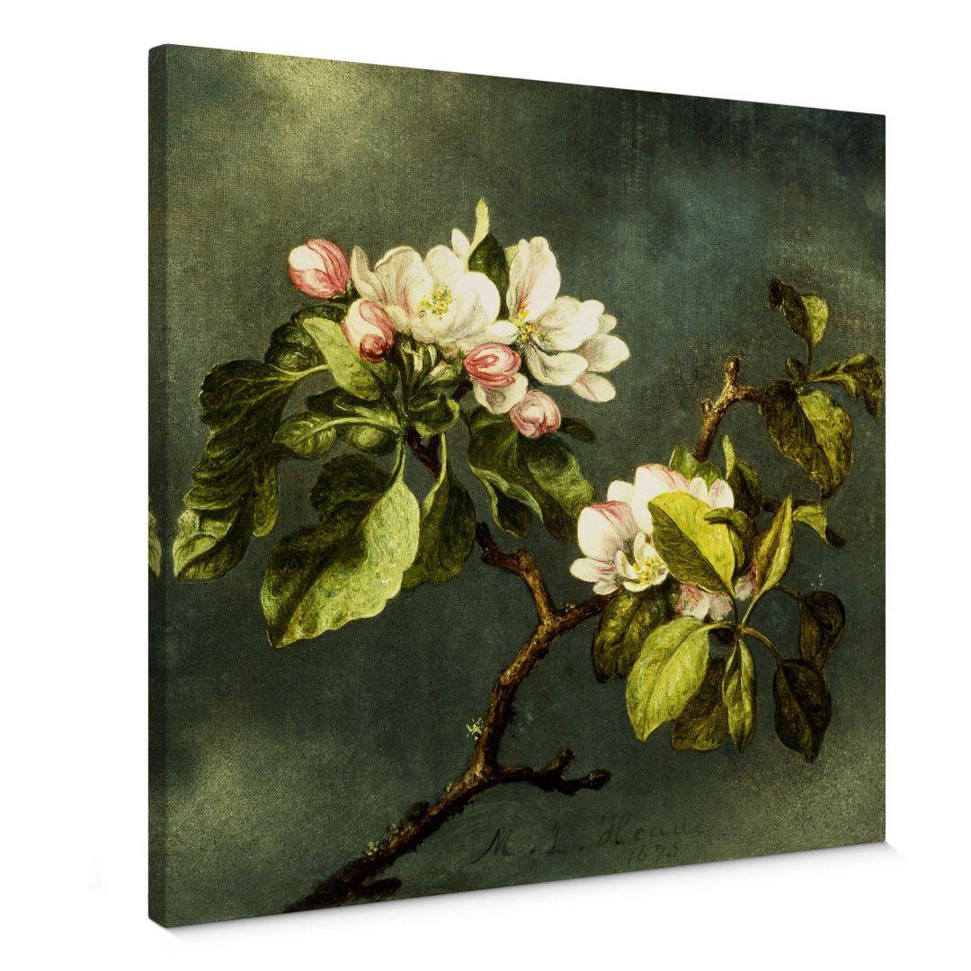 Leinwandbild Heade - Apfelblüten - WA254293