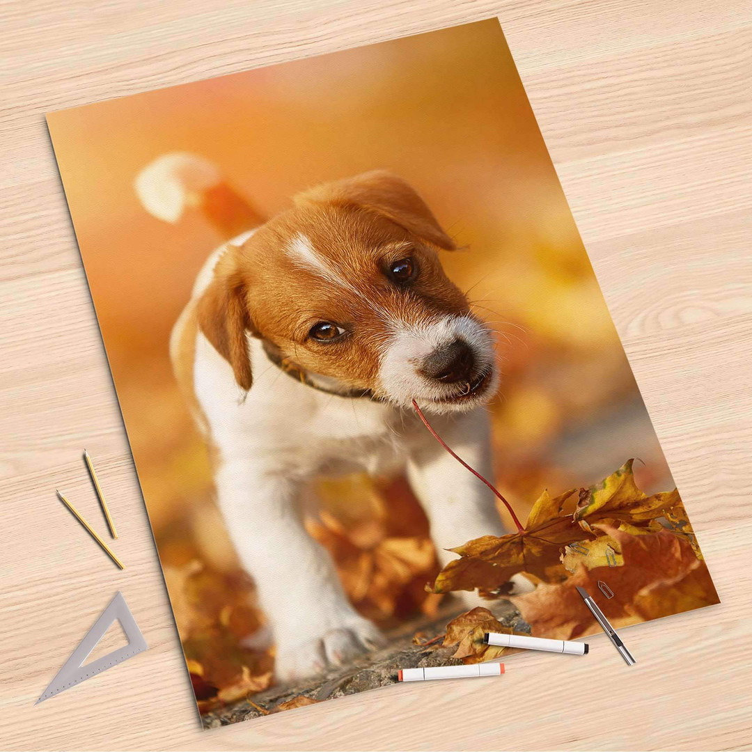 Folienbogen (80x120cm) - Jack the Puppy - CR107356