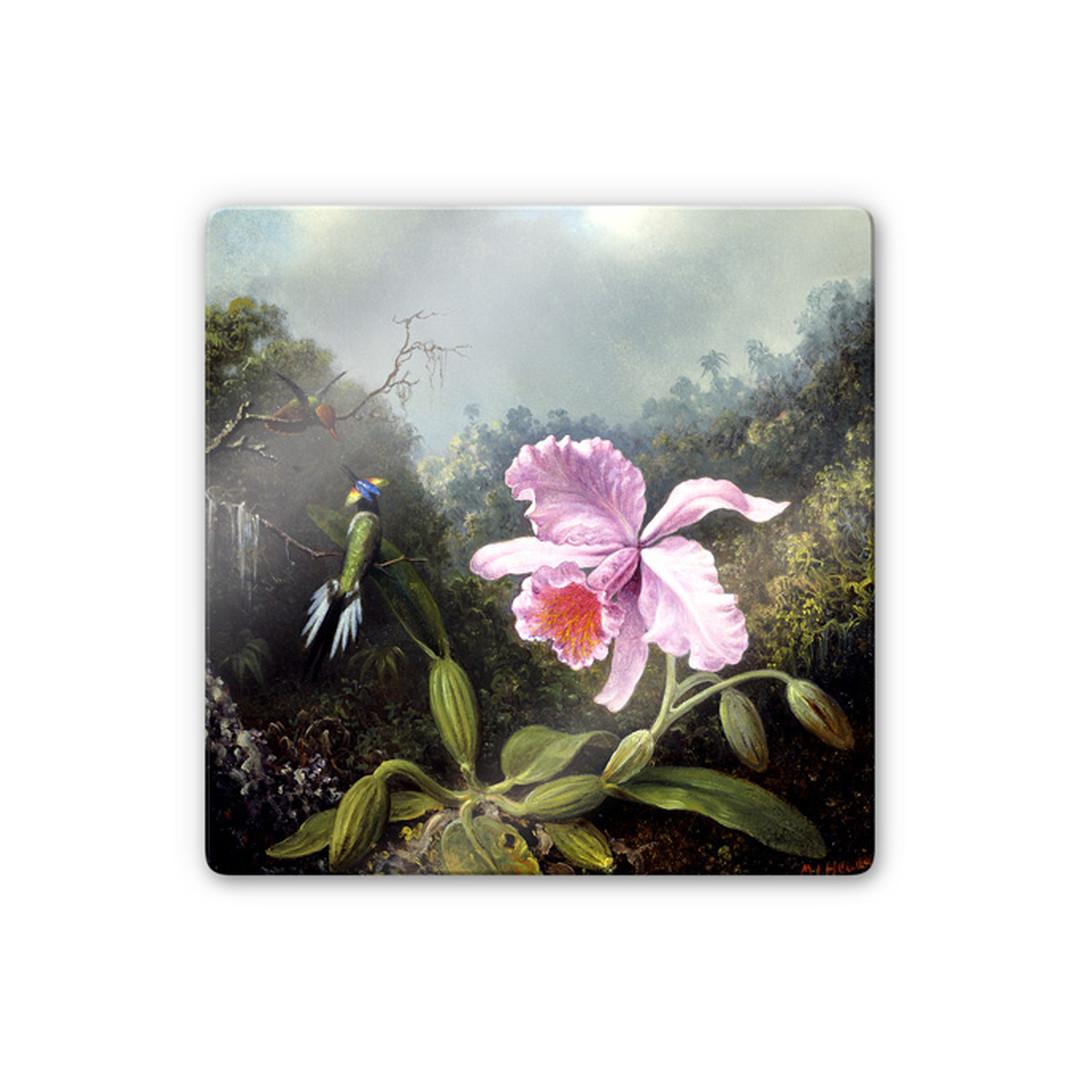 Glasbild Heade - Stillleben mit Orchidee und Kolibris - WA252843
