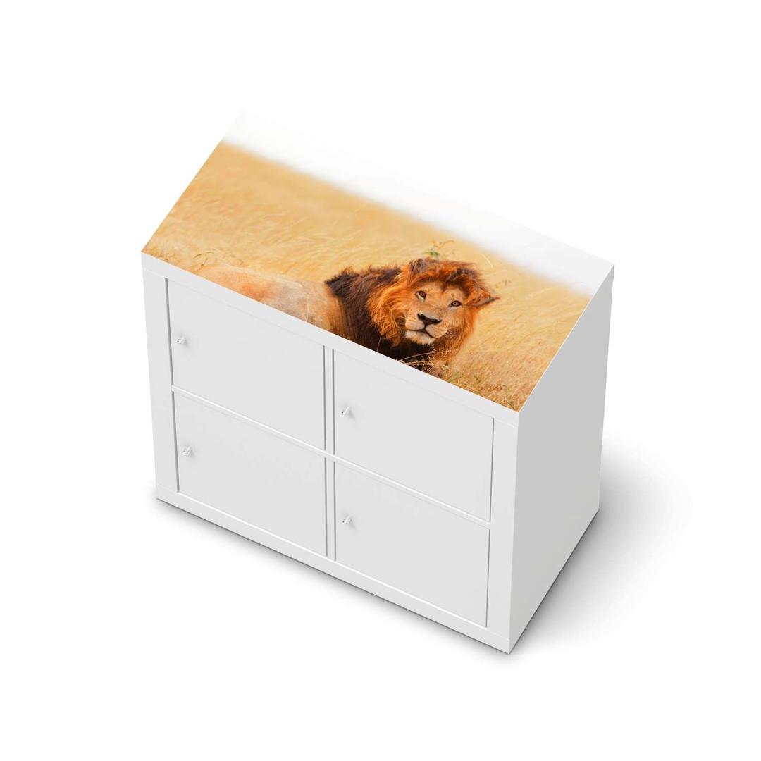 Möbelfolie IKEA Expedit Regal oben - Lion King - CR114646