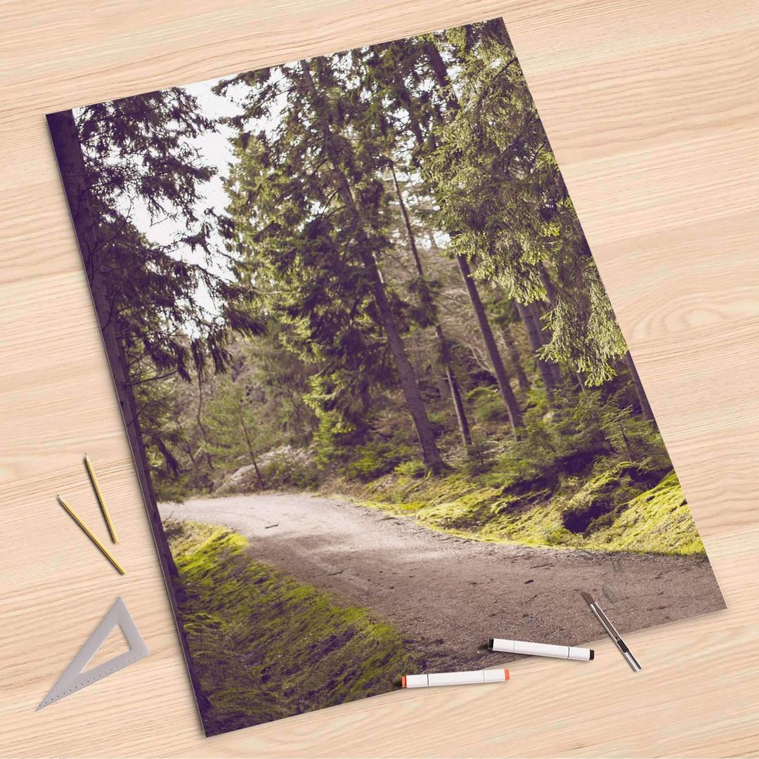 Folienbogen (80x120cm) - Forest Walk - CR107324