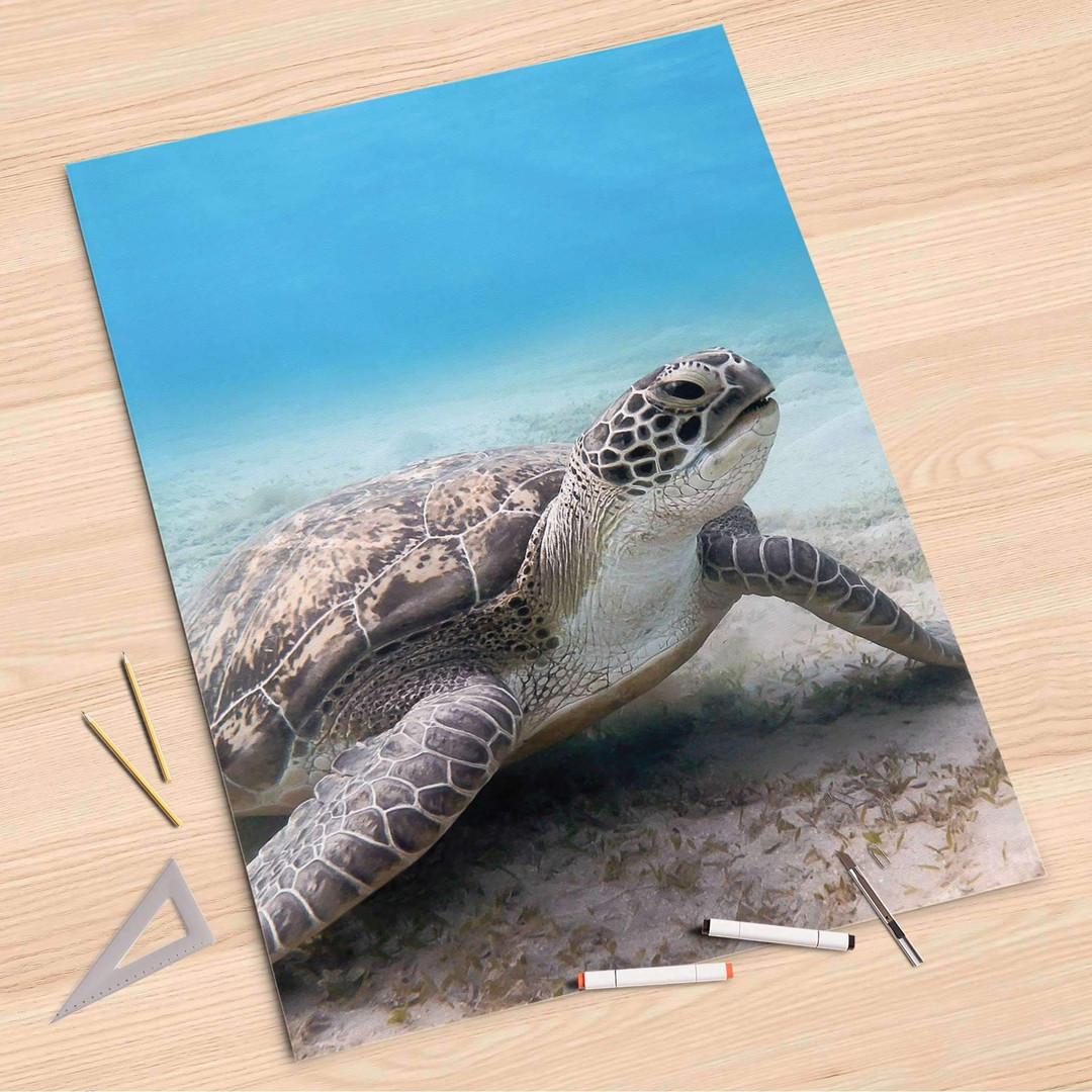 Folienbogen (80x120cm) - Green Sea Turtle - CR107337