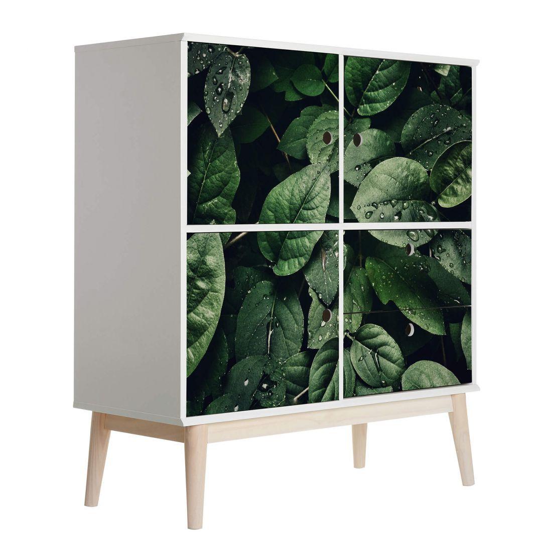 Möbelfolie Grüne Blätter - WA255782