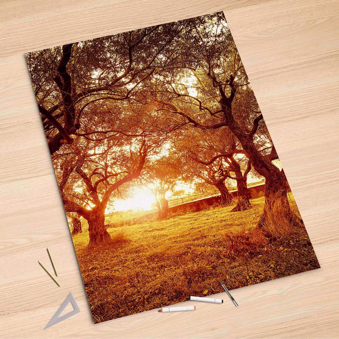 Folienbogen (100x150cm) - Tree Sunlight - CR106294