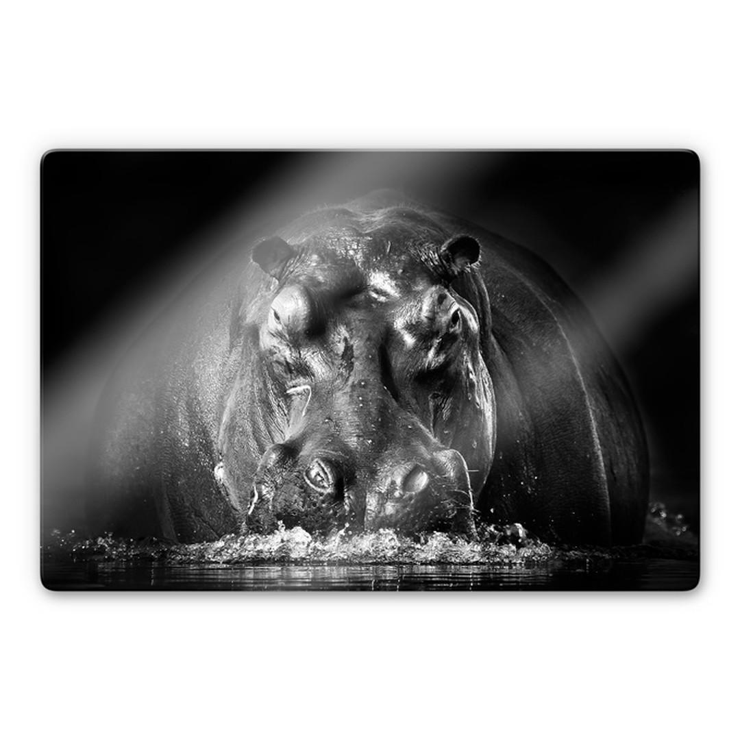 Glasbild Golob - Prustendes Nilpferd - WA252836