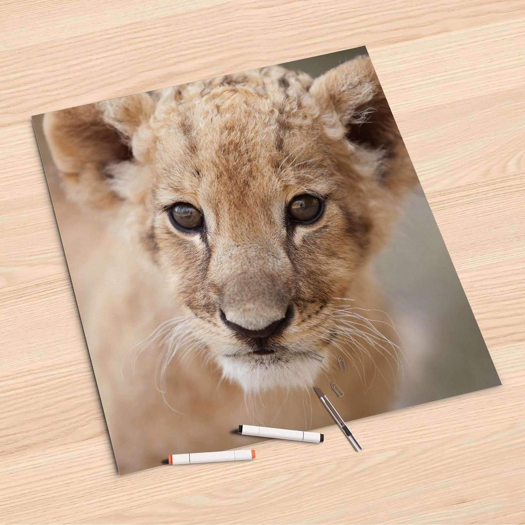 Folienbogen (60x60cm) - Simba - CR107184