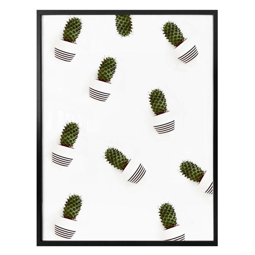 Poster Mein kleiner Kaktus - Kakteen - WA258634