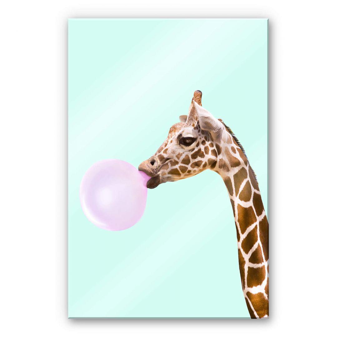 Acrylglasbild Fuentes - Giraffe und ihr Kaugummi - WA251726