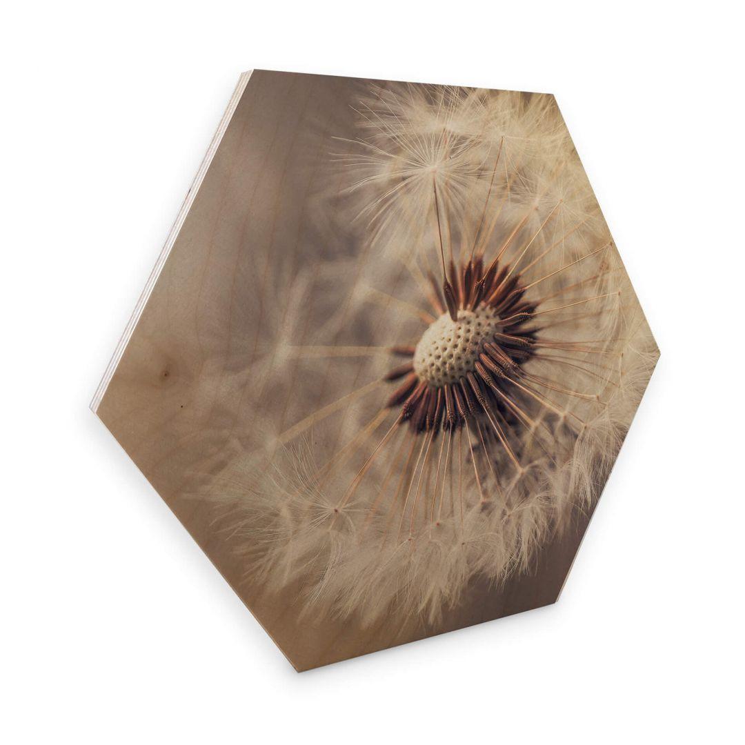 Hexagon - Holz Birke-Furnier Delgado - Pusteblume - WA273758