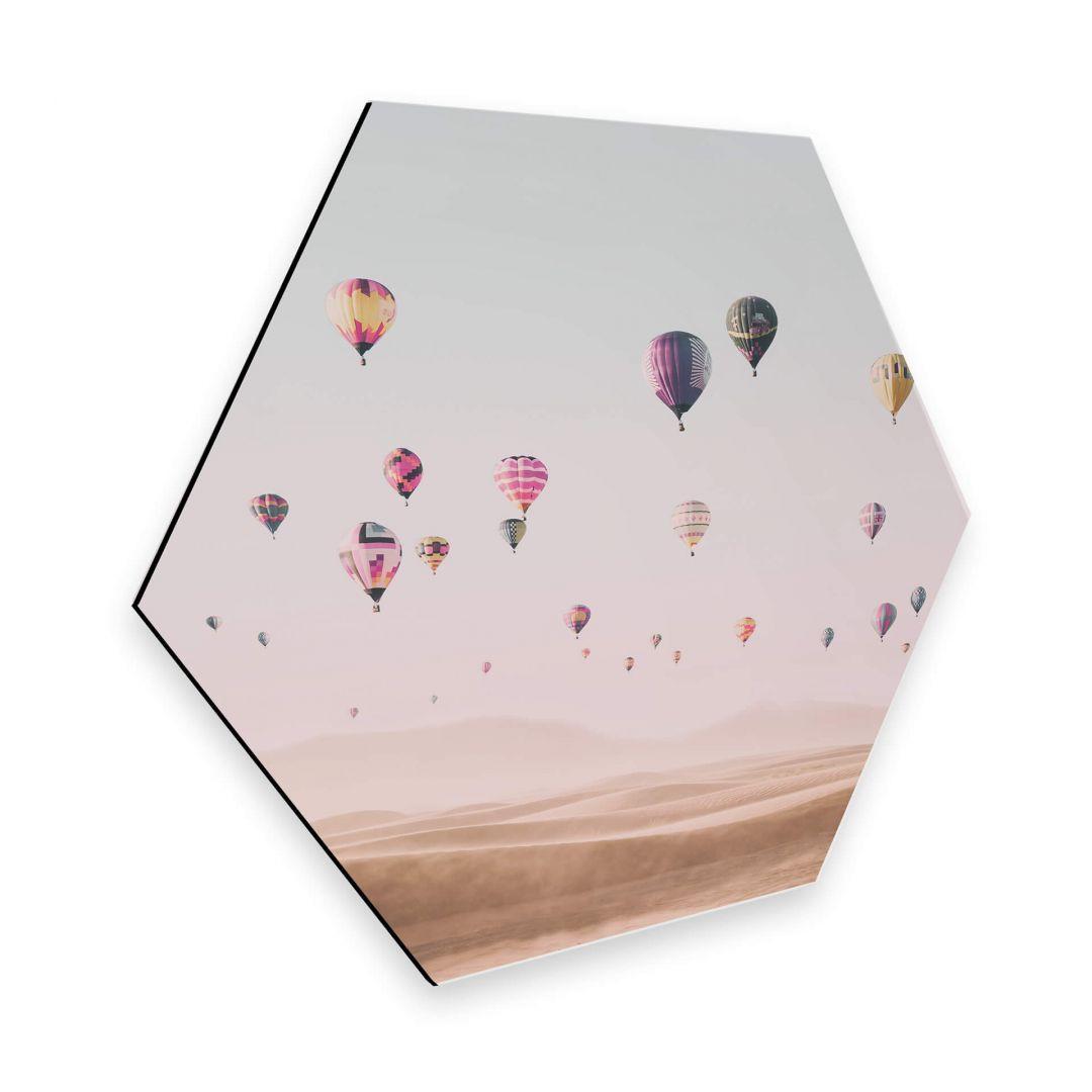 Hexagon - Alu-Dibond - Sisi & Seb - Heissluftballons - WA253119