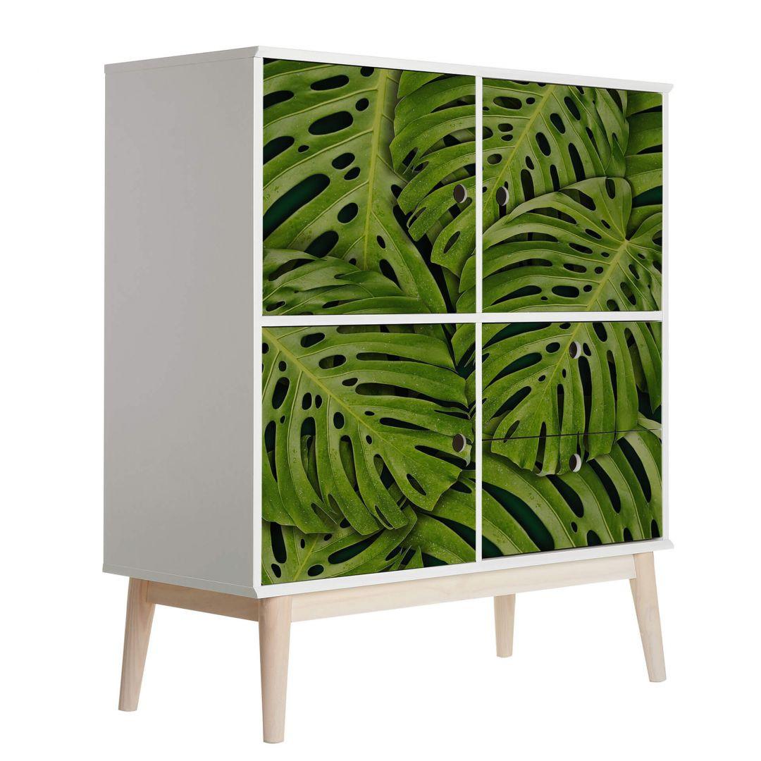 Möbelfolie Grüne Monsterablätter - WA255789