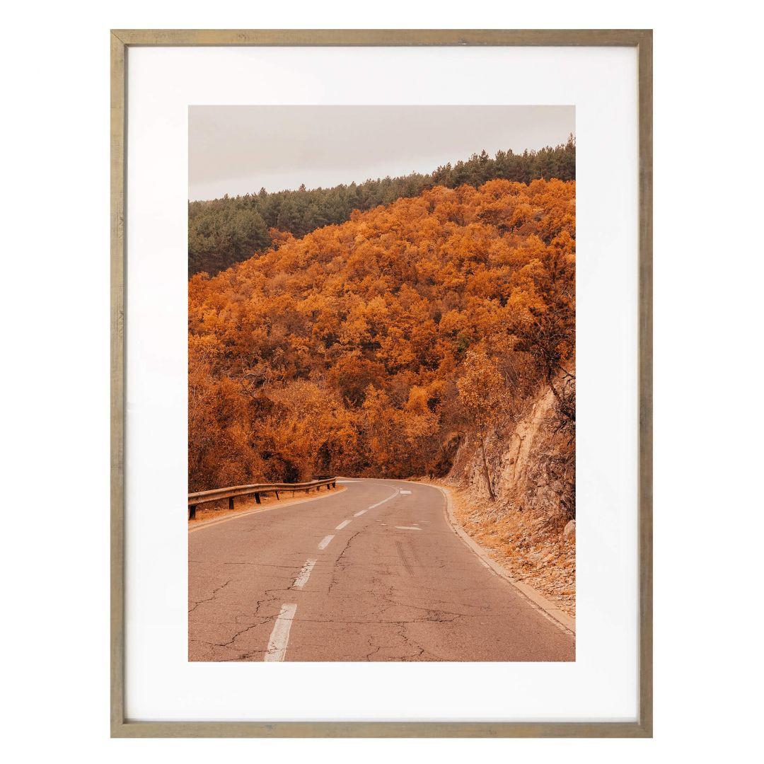 Poster Herbst im Wald - WA265643