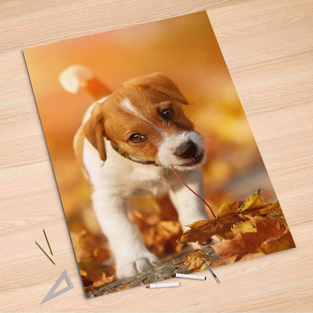 Folienbogen (100x150cm) - Jack the Puppy - CR106205