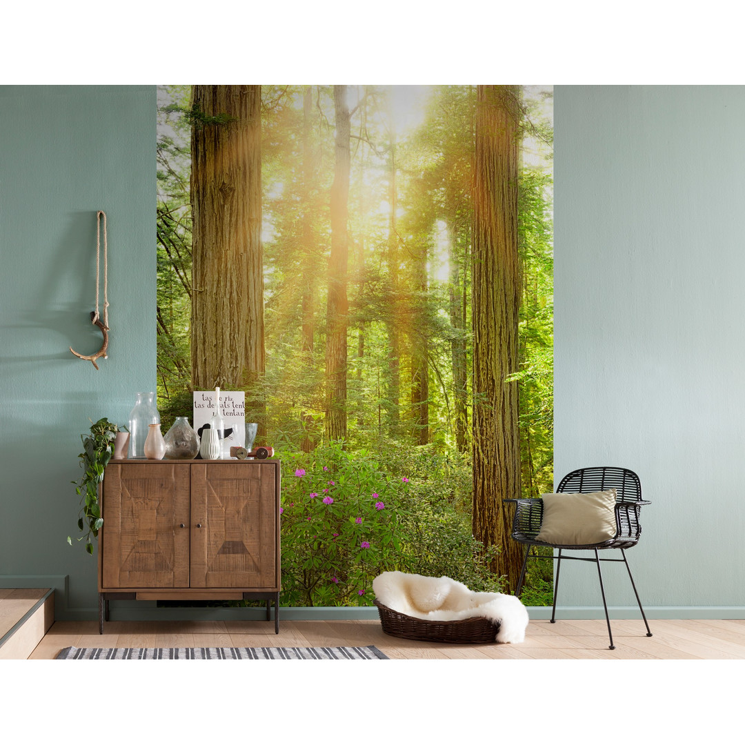 Vliestapete Redwood - KOXXL2-044