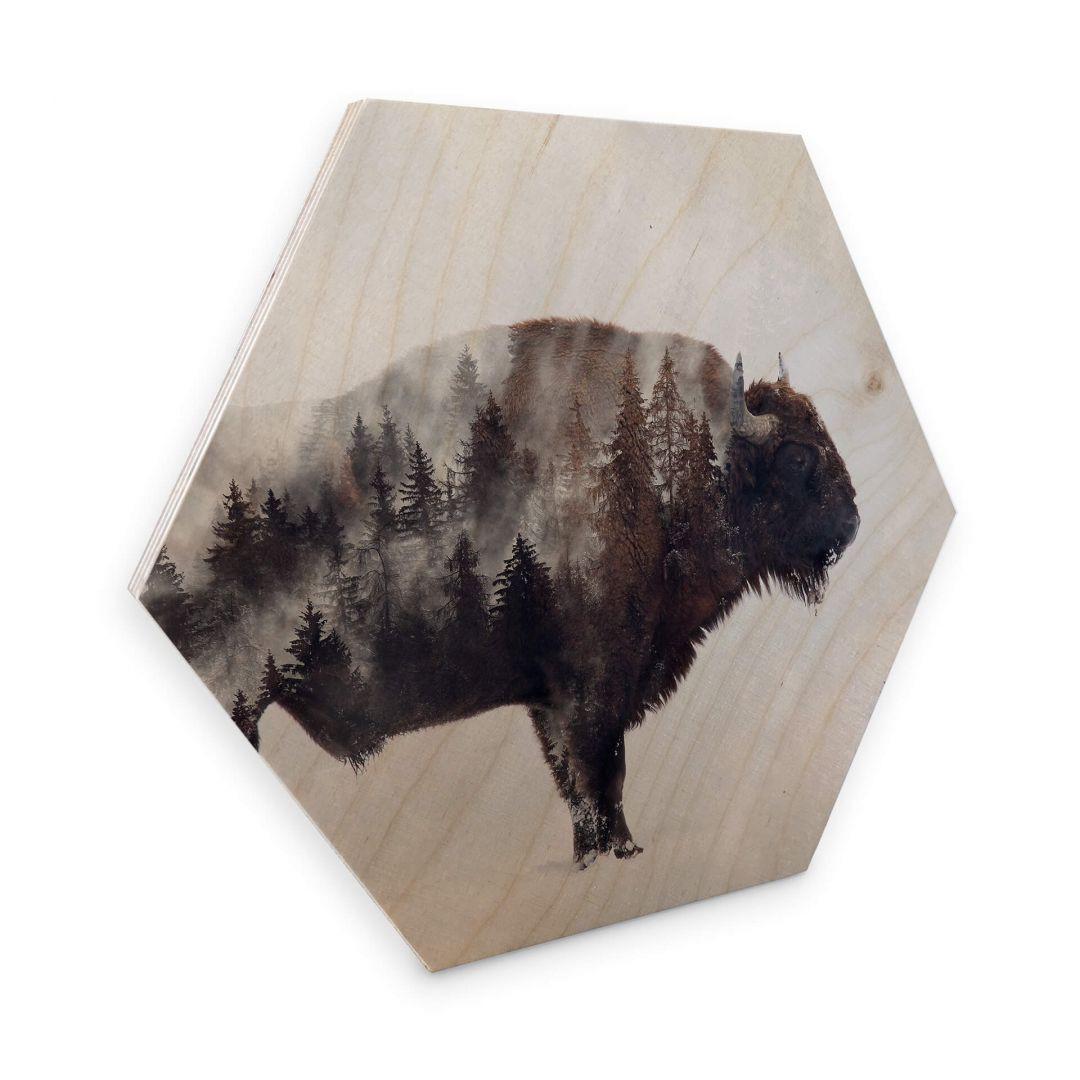 Hexagon - Holz Birke-Furnier - Beáta - Der Bison - WA253134