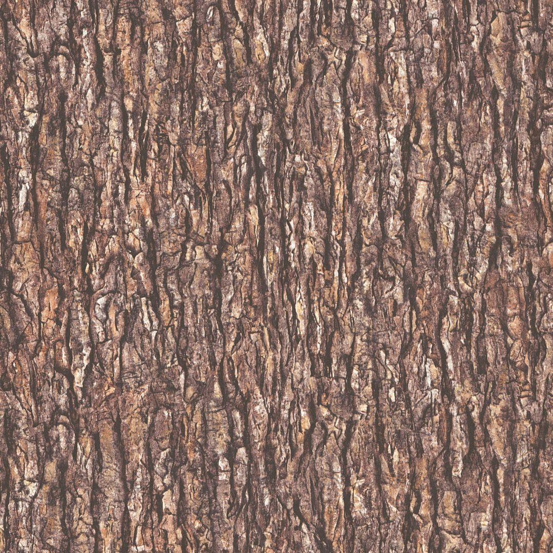 A.S. Création Vliestapete il Decoro Tapete in Baumrinden Optik beige, braun, grau - WA268297