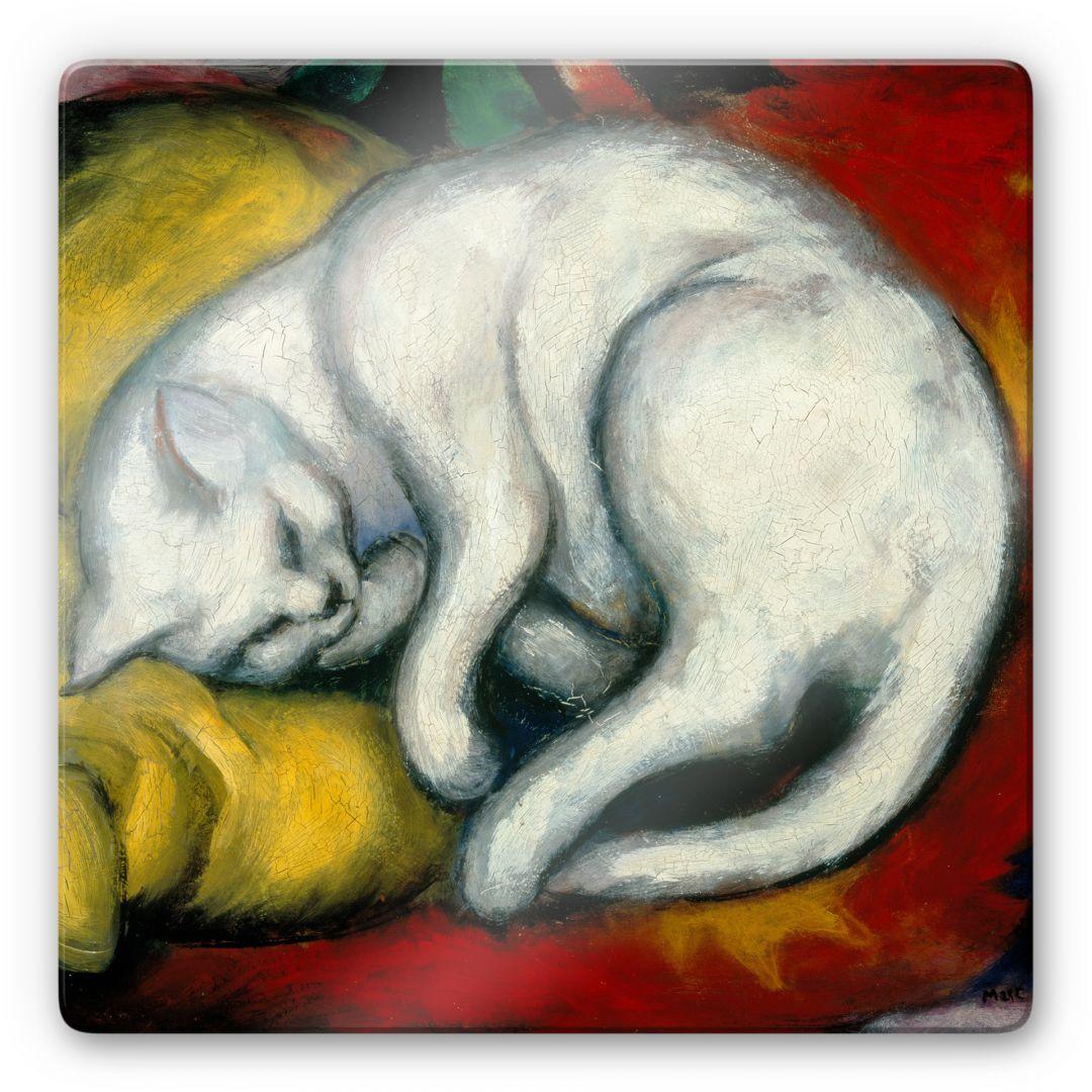 Glasbild Marc - Die weisse Katze - quadratisch - WA125225