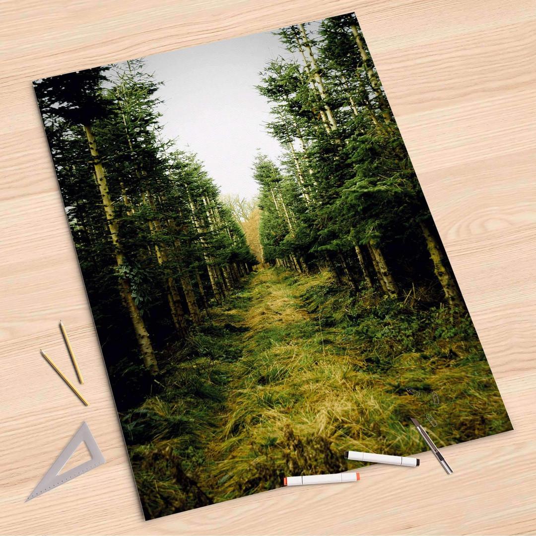 Folienbogen (80x120cm) - Green Alley - CR107336