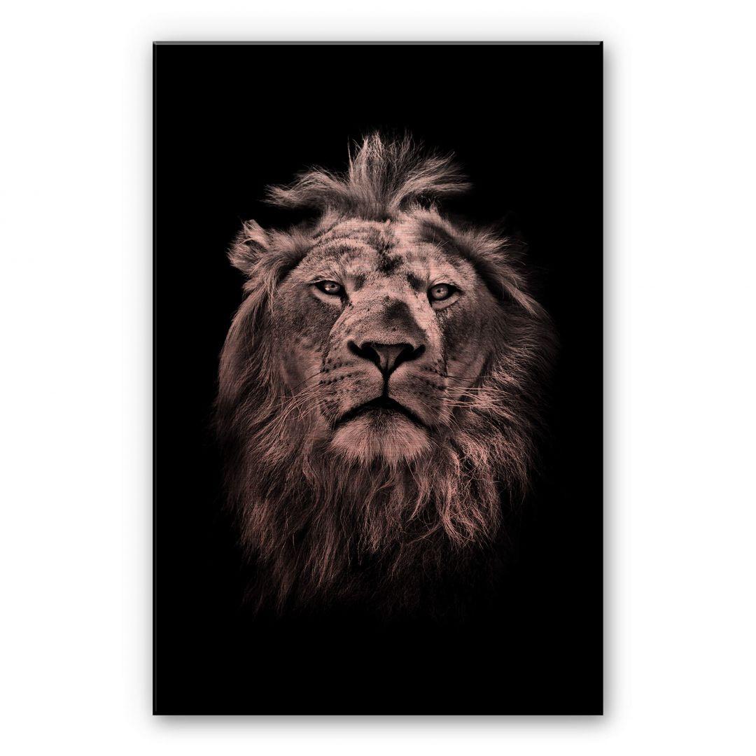 Alu-Dibond-Kupfereffekt Lion - WA252120