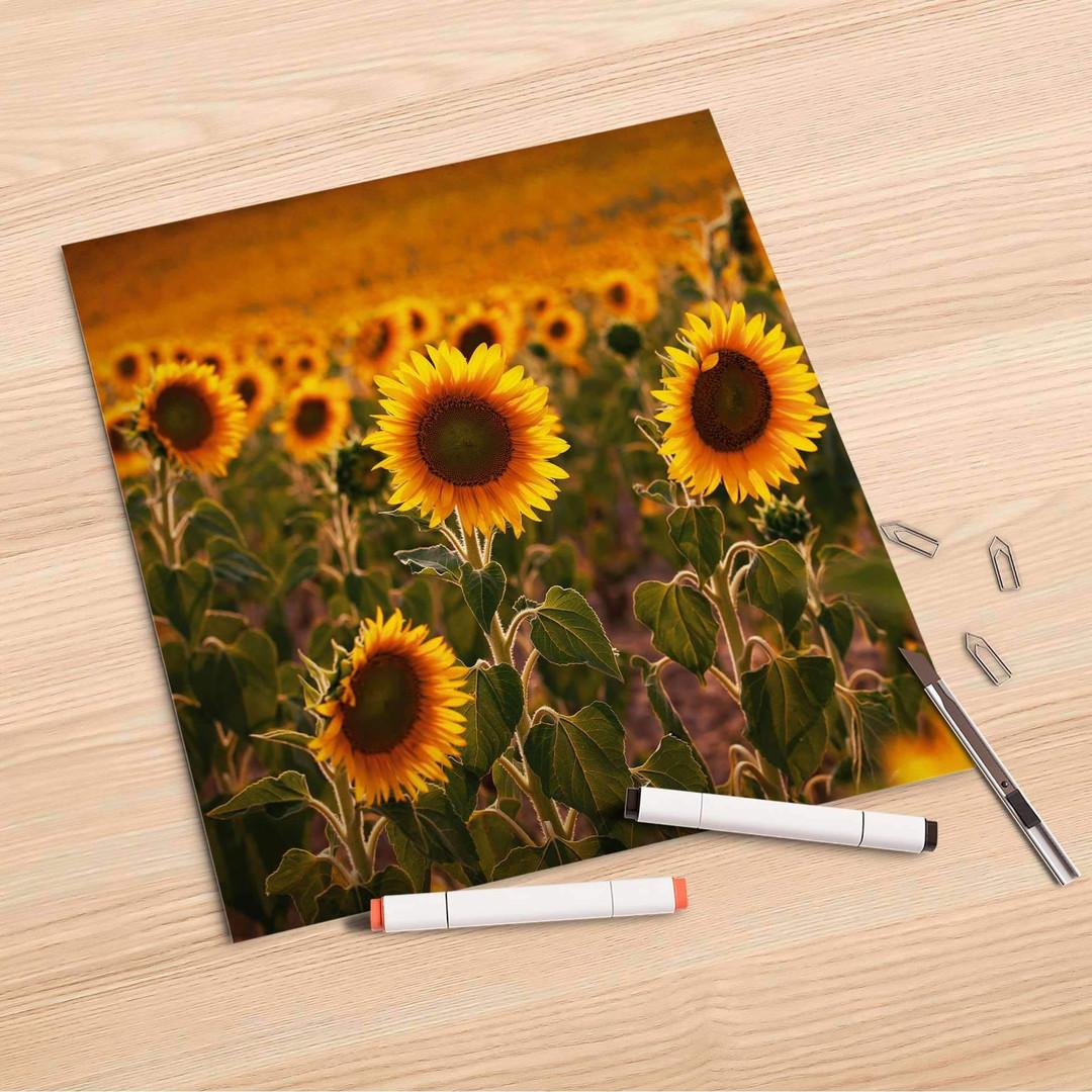Folienbogen (30x30cm) - Sunflowers - CR106952