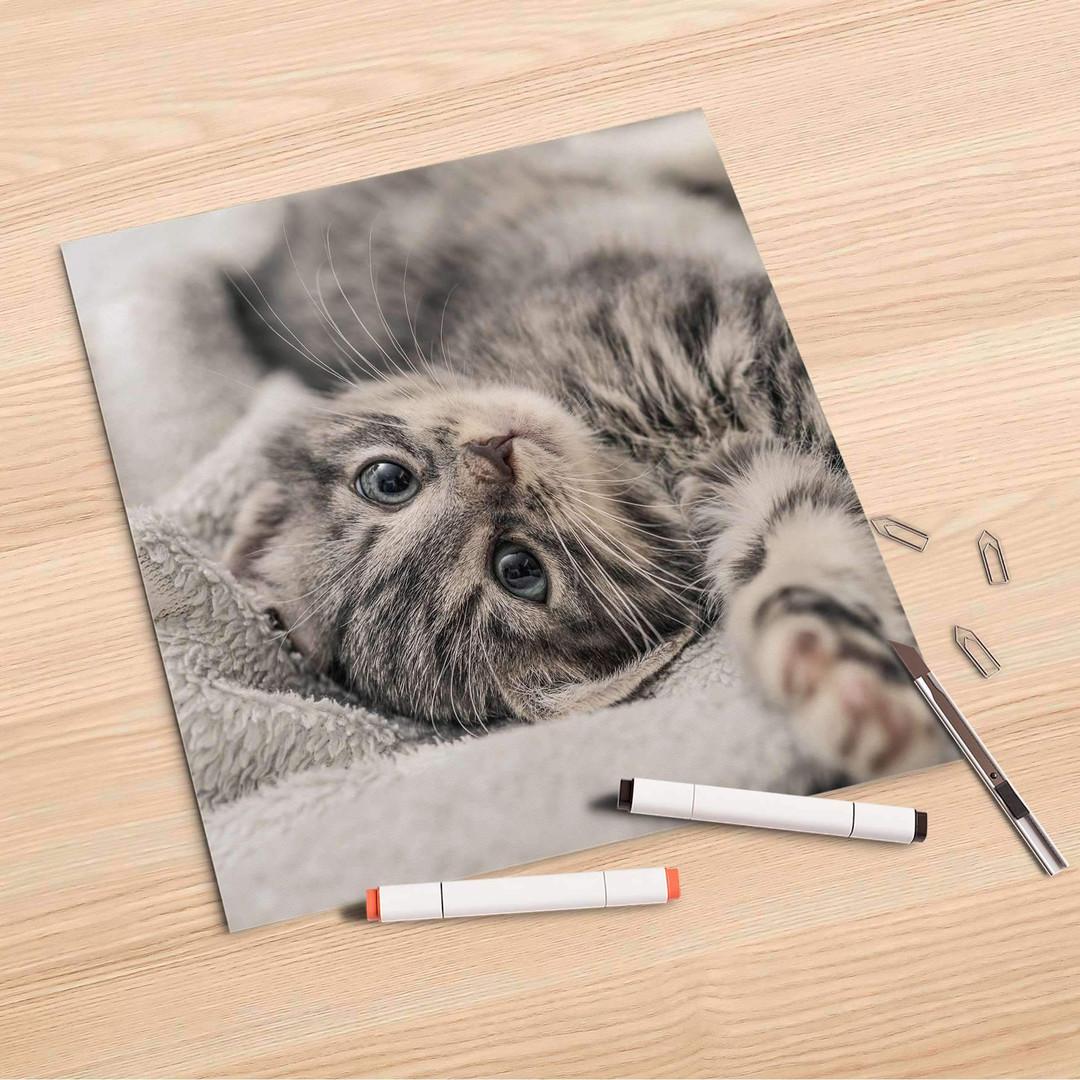 Folienbogen (30x30cm) - Kitty the Cat - CR106866
