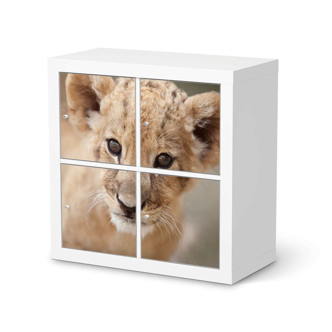 Möbelfolie IKEA Expedit Regal 4 Türen - Simba - CR114585