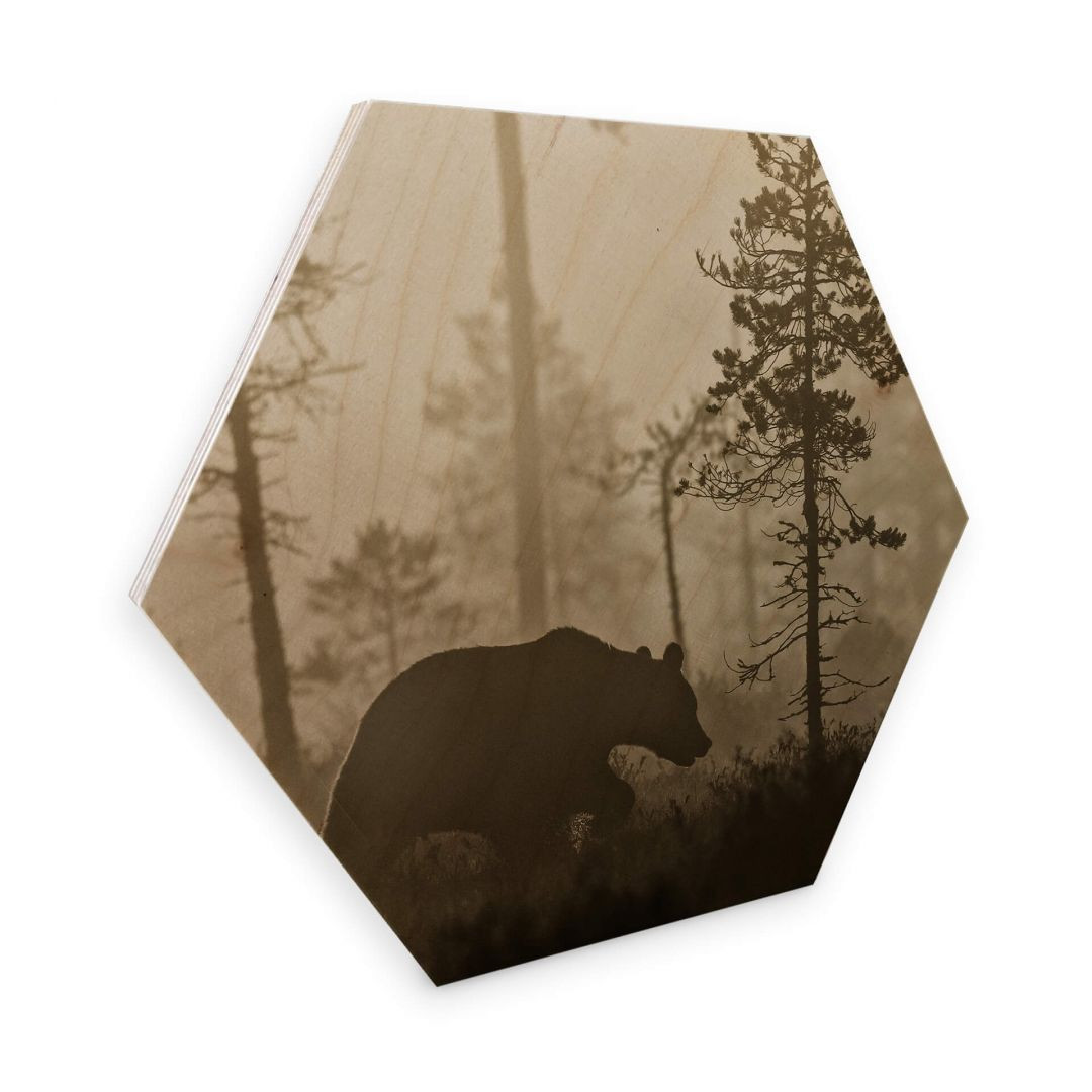 Hexagon - Holz Birke-Furnier - Ove Linde - Nebel am Morgen - WA253343