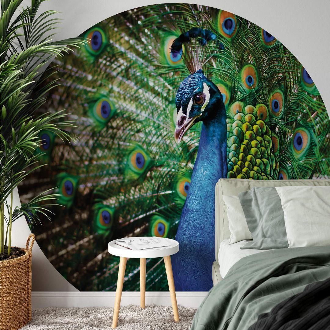 Fototapete Beautiful Peacock - Rund - WA288786