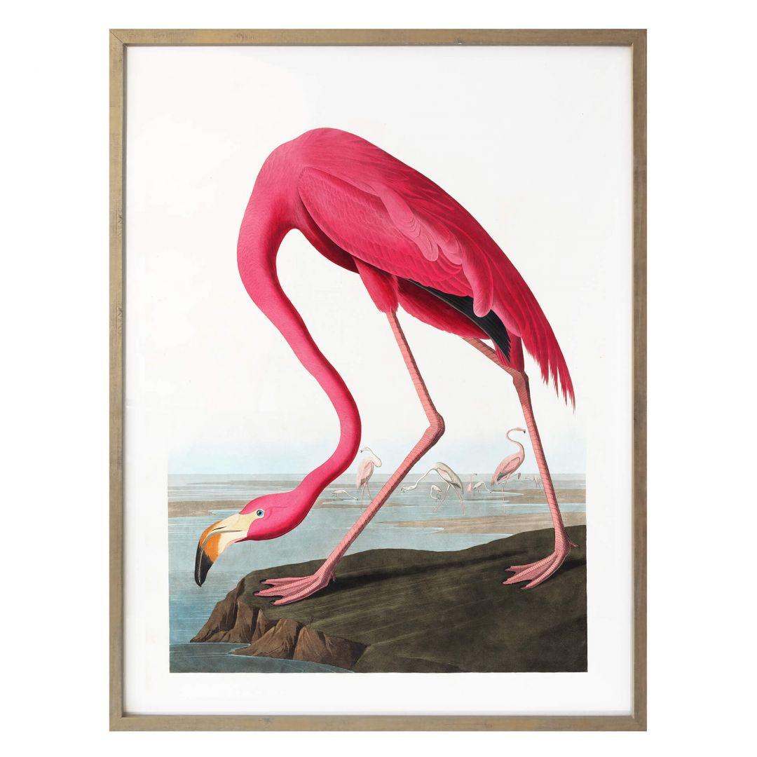 Poster Pink Flamingo - WA258795