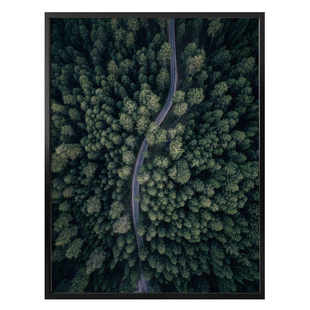 Poster Lopez - Der Blick von oben: Strasse im Wald - WA258544
