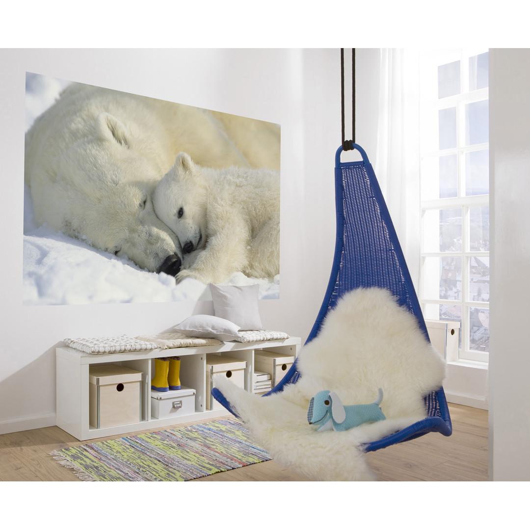 Fototapete Polar Bears - KO1-605