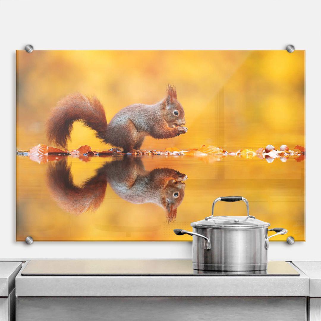 Spritzschutz van Duijn - Eichhörnchen mit Nuss - WA287637
