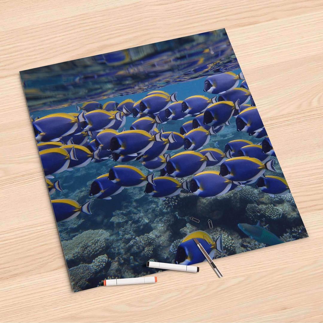 Folienbogen (60x60cm) - Fish swarm - CR107064