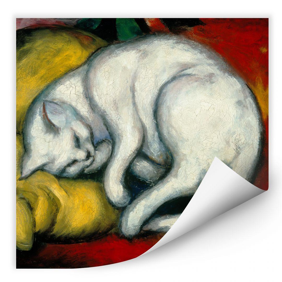 Wallprint Marc - Die weisse Katze - quadratisch - WA186566
