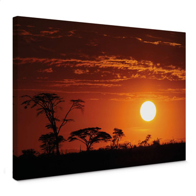 Leinwandbild Afrikanische Steppe