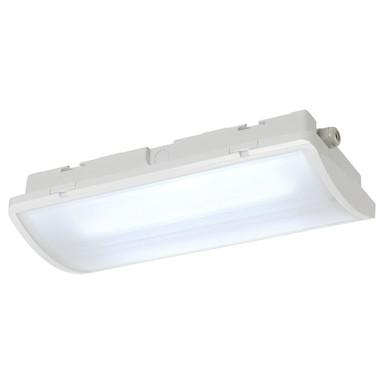 P-Light, Deckenleuchte, LED, 6000K, rechteckig, weiss, 6.5W, IP65