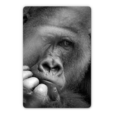 Glasbild Braun - Der Gorilla
