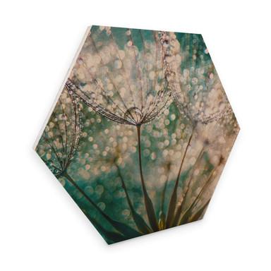 Hexagon - Holz Birke-Furnier Delgado - Funkelnde Pusteblume