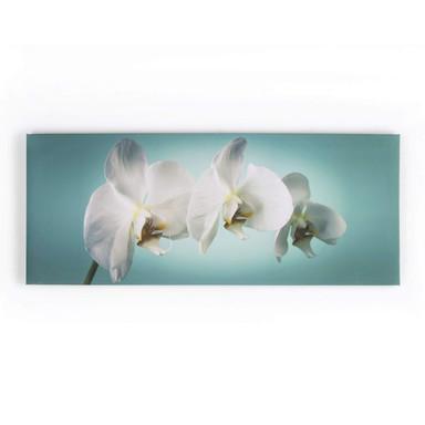 Leinwandbild TEAL ORCHID - Bild 1