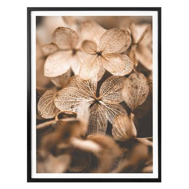 Poster Annie - Zarte Blüten