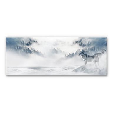 Acrylglasbild - Wölfe im Schnee - Panorama