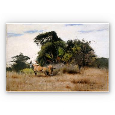 Hartschaumbild Kuhnert - Antilopen