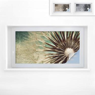 Sichtschutzfolie Pusteblumen-Poesie - Panorama