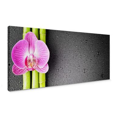 Leinwandbild Orchid and Bamboo - Panorama (horizontal)