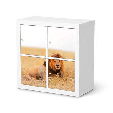 Möbelfolie IKEA Expedit Regal 4 Türen - Lion King